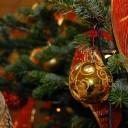 Rosso e Oro: la tradizione veste l'albero